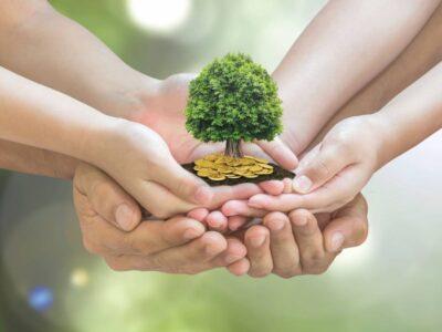 Comment bien gérer et optimiser votre placement d'épargne ?