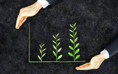 RSE : l'impact sur l'image de marque de l'entreprise